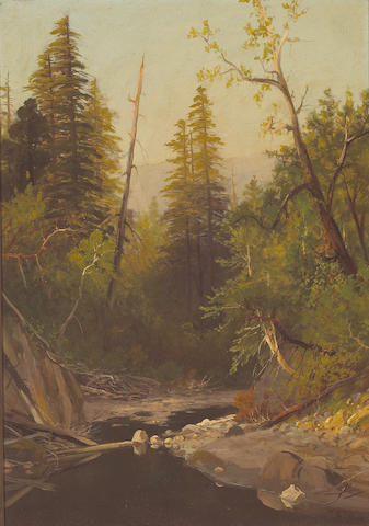 (n/a) Frederick Ferdinand Schafer (German/American, 1839-1927) Near Felton, Santa Cruz Mountains, California 27 x 19in