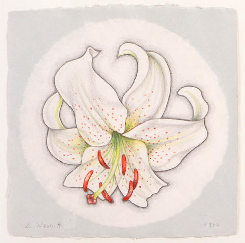 (n/a) Lowell Nesbitt (American, 1933-1993) White Tiger Lily, 1986 20 1/4 x 20in
