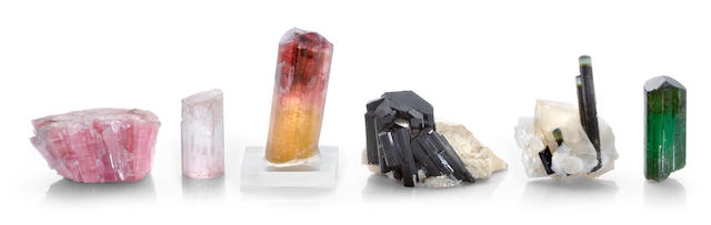 Group of Tourmaline Specimens from World Localities