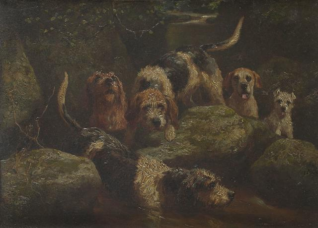 Alfred Duke (British, died 1905) Otter Hounds