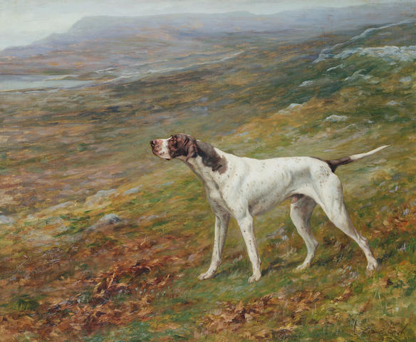 Maud Earl (British, 1864-1943) An English Pointer on a moor 9 1/4 x 30 1/16 in. (23.5 x 76.3 cm.)