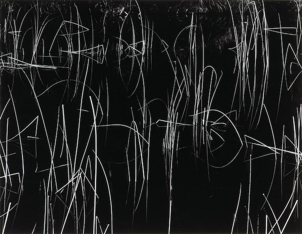 Brett Weston Reeds 1975;