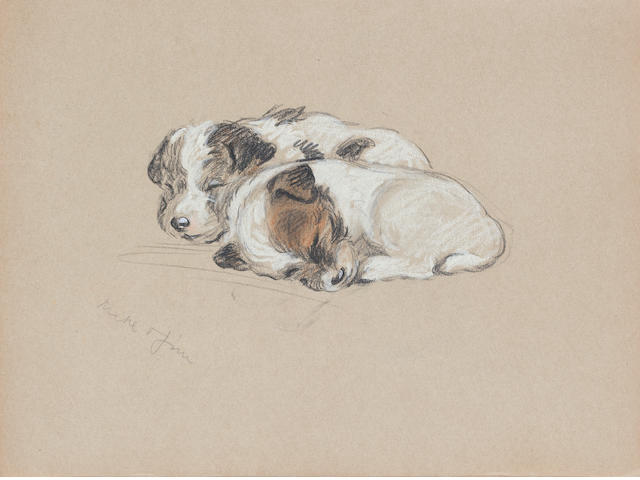 Lucy Dawson (British, -1954) 'Jim & Mike as puppies' - a sketch book containing fourteen drawings 11 1/8 x 9 in. (28.3 x 22.8 cm.) unframed