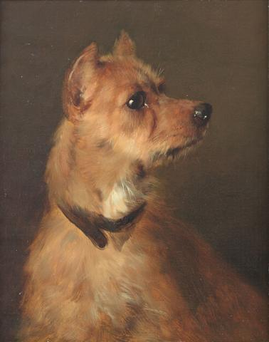 Follower of George Earl (British, 1824-1908) A Terrier 14 x 11 in. (34.5 27.5 cm.)