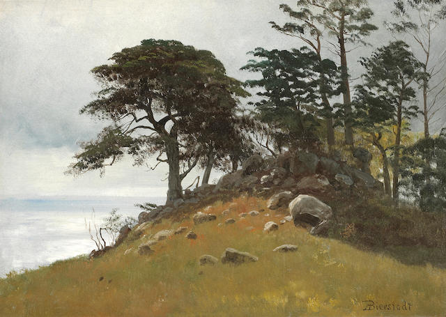 (n/a) Albert Bierstadt (German/American, 1830-1902) Cypress Point, Monterey 14 x 19 1/2in