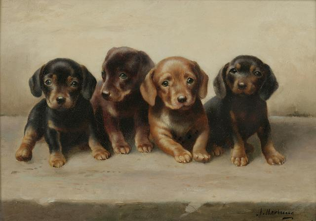Carl Reichert (Austrian, 1836-1918) Four Dachshund puppies 7 1/8 x 10 1/4 in. (18.1 x 26 cm.)