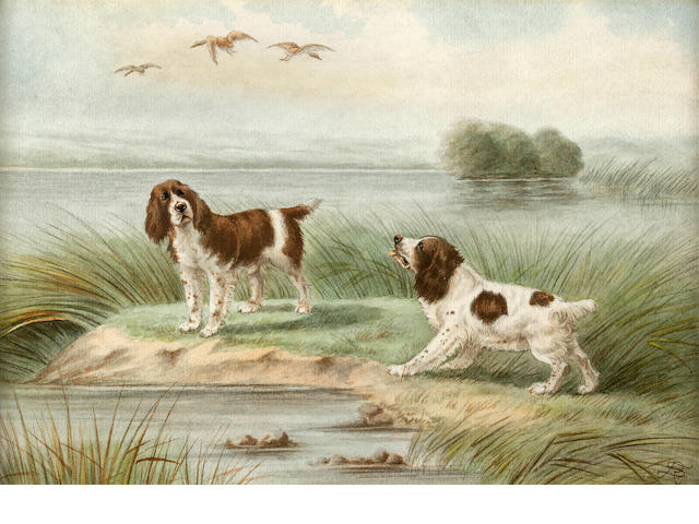 R. Seadon (British, early 20th century) Spaniels in the field sight of each 7 x 10 1/4 in. (17.8 x 26 cm.)