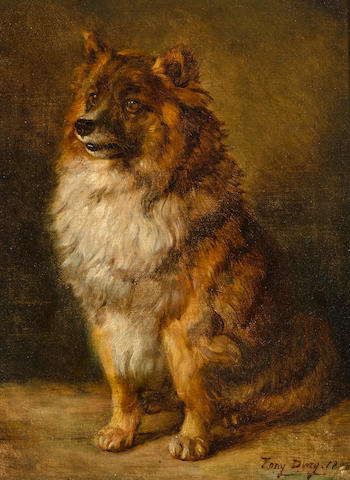 Antoine (Tony) Dury (French, 1819-died circa 1896) A Pomeranian 15 3/4 x 12 in. (40 x 30 cm.)