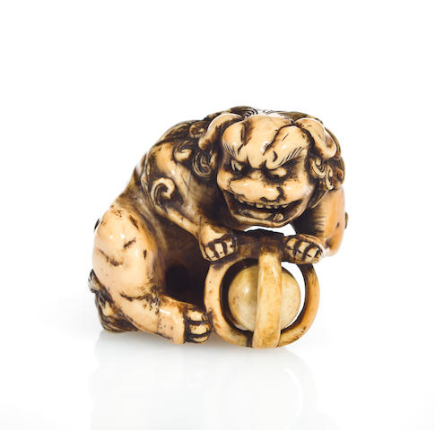 An ivory netsuke of a shishi Kyoto, 18th century