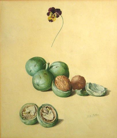 School of Franz Xavier Petter (Austrian, 1791-1866) A study of walnuts sight, 13 1/2 x 10 1/4in