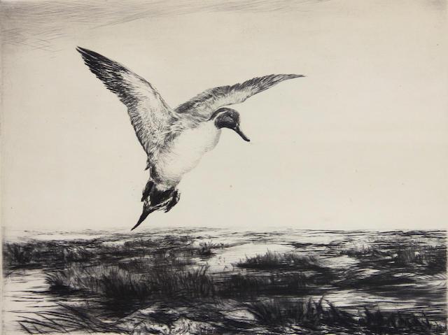 Roland Clark (American, 1874-1957); Duck;