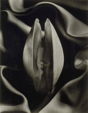 Ruth Bernhard (American, 1905-2006); Shell in Silk;