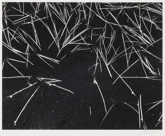 Ansel Adams (American, 1902-1984); Grass & Pool;