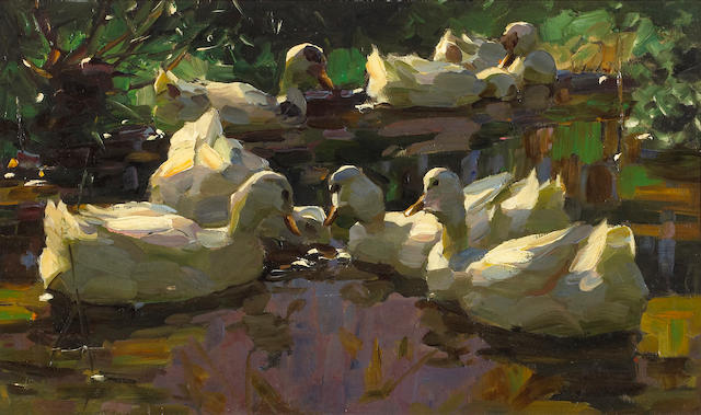 Alexander Koester (German, 1864-1932) Ducks in a pond (Busy-Bodies) 11 1/4 x 19in (28.5 x 48.2cm)