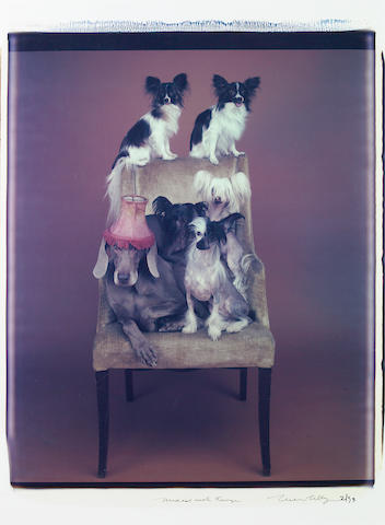 William Wegman (American, born 1943); Mixed with fringe;