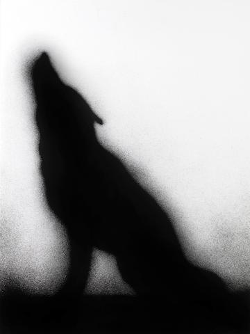 Edward Ruscha (American, born 1937); Coyote;