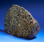 Brenham End Piece—a Pallasitic American Meteorite