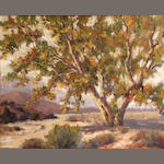 American School (20th Century) Tree in a landscape 16 x 20in