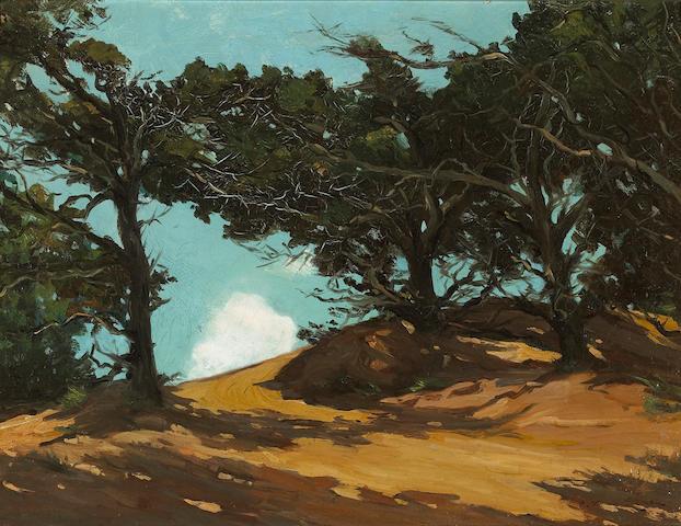 (n/a) Frank Van Sloun (American, 1879-1938) Cypress on the coast 18 x 24in