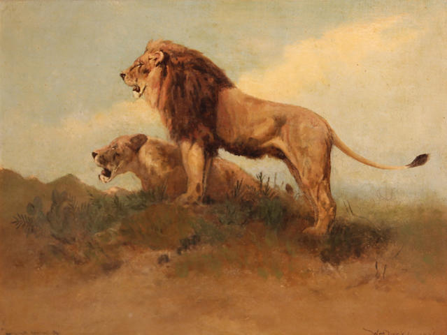 Willaim Drake, Lions hunting, o/c