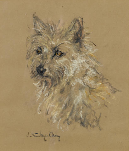 J. Stanley-Cary (British, active 1950) Study of a Terrier 10 7/16 x 8 7/8 in. (26.5 x 22.5 cm.)