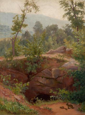 Gertrude E. Spurr Cutts (Canadian, 1858-1941) Natural Bridge N.Adams, Mass.
