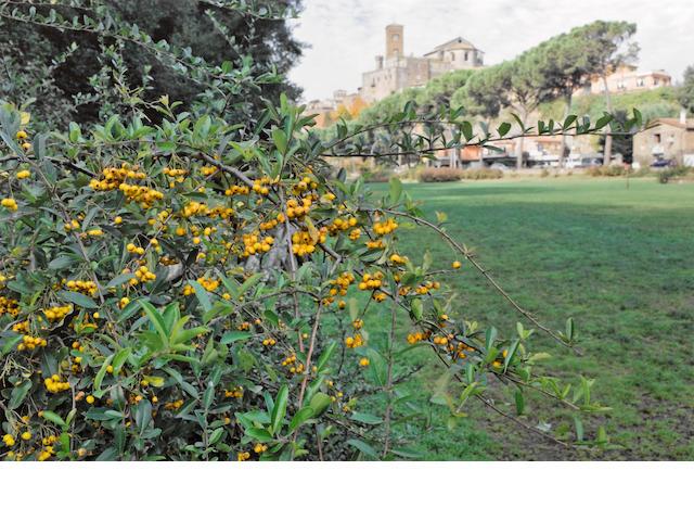 Richard Benson, Tuscany, Italy, Multiple Impression Pigment Print, 2009;
