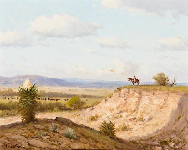 Porfirio Salinas Cowboy