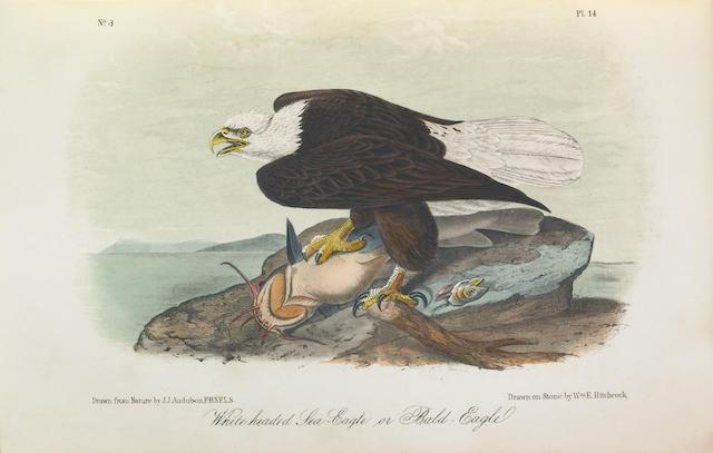 AUDUBON, JOHN JAMES. 1785-1851. The Birds of America. New York: George R. Lockwood, [1870-71].