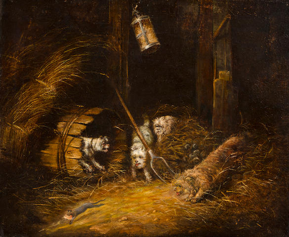 Circle of Edward Armfield (British, 1817-1896) Terriers ratting 19 7/8 x 24 1/4 in. (50.5 x 61.5 cm.)
