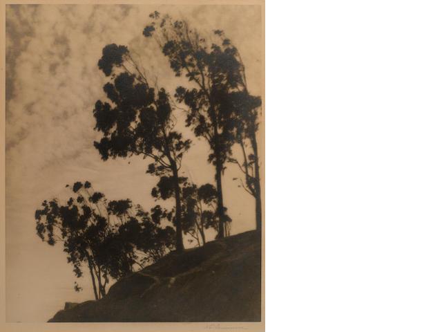 William E. Dassonville (American, 1879-1957); Scenes of San Francisco; (3)
