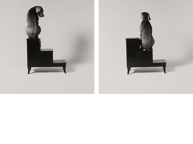 William Wegman (American, born 1943); Second and Third Steps;