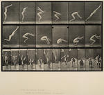 Eadweard Muybridge (British, 1830-1904); Selected plates, from Animal Locomotion;