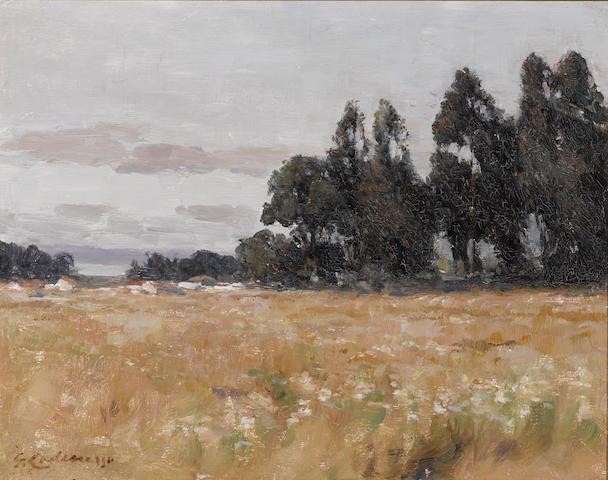 Giuseppe Cadenasso (Italian/American, 1858-1918) Meadow with trees beyond 16 x 20in