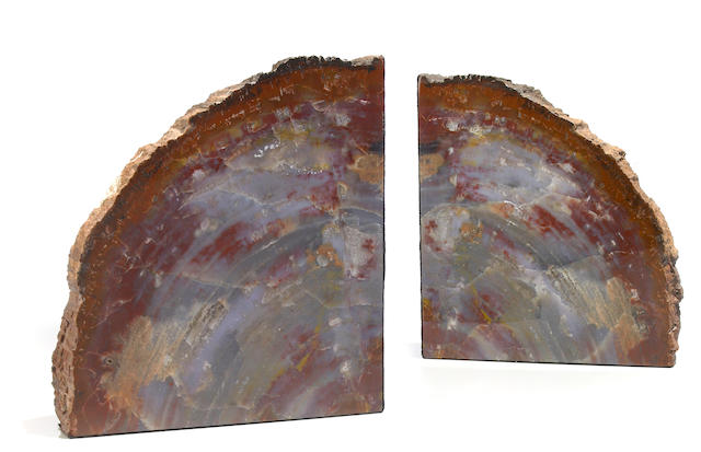 A pair of large petrified wood bookends