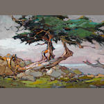S C Yuan, Cypress Point, oil on board