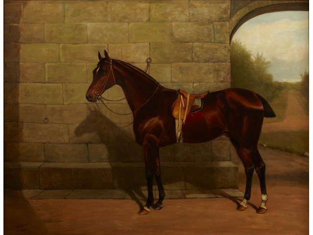 John Chester Mathews (British, fl.1884-1912) A chestnut race horse in a courtyard 28 x 36in