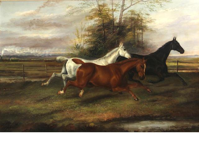 James Clark (British, 1858-1943) At full gallop 16 x 24in