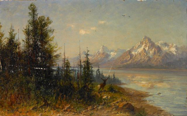 John Fery (Austrian/American, 1859-1934) Elk in an Extensive Western Landscape 10 x 16in