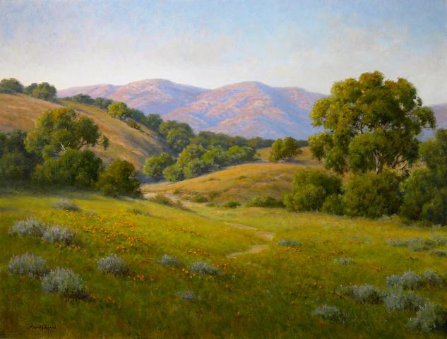 David Chapple (American, born 1947) Evening Light 30 x 40in