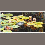 Shirley Pettibone (American, born 1936) Lily Pond with Turtle, 1979 10 3/4 x 18 3/4in