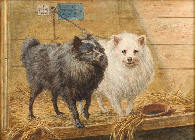 R.S. Moseley (British, active 1862-1893) Two Pomeranians in a Kennel 7 1/2 x 10 1/2in (19 x 26.6cm)