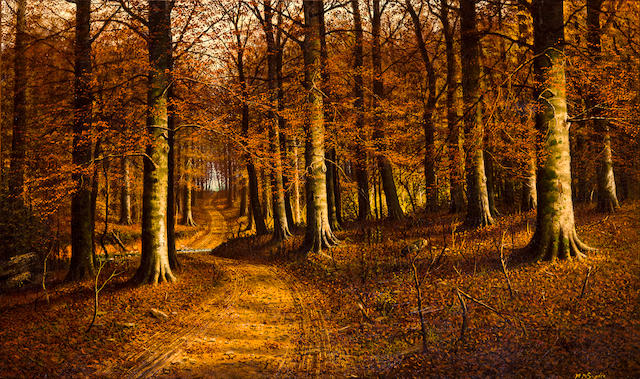 W.M. Snyder, Forest landscape,