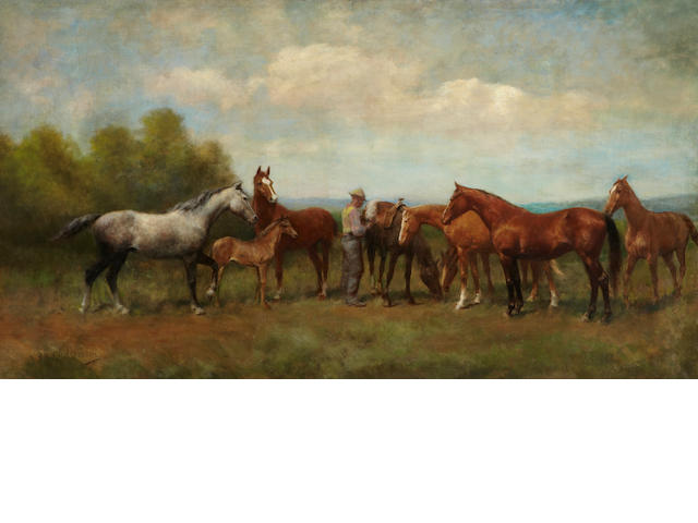 Paul Giovanni Wickson (Canadian, 1860-1922) Among the herd, 1914 35 x 63in