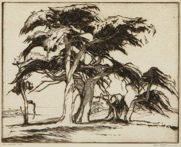 Gene Kloss Old Cypress trees etching;