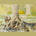 Reuben Ward Binks (British, 1880-1940) Two Otterhounds working at base of a tree