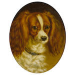 George Jackson (British, active 1830-1864) Portrait of a King Charles spaniel