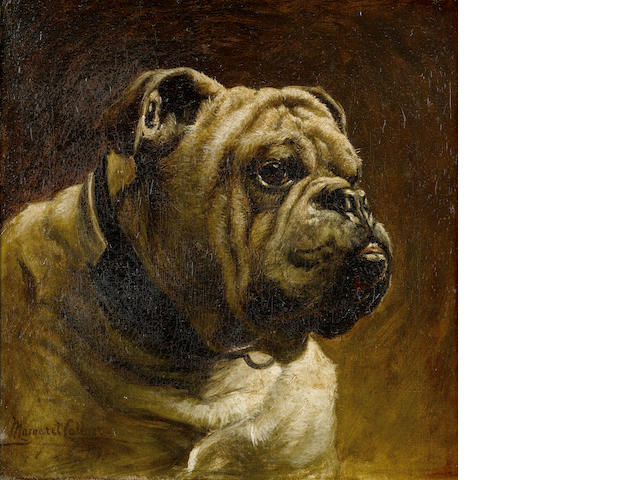 Margaret Collyer (British, 1872-1945) A Bulldog