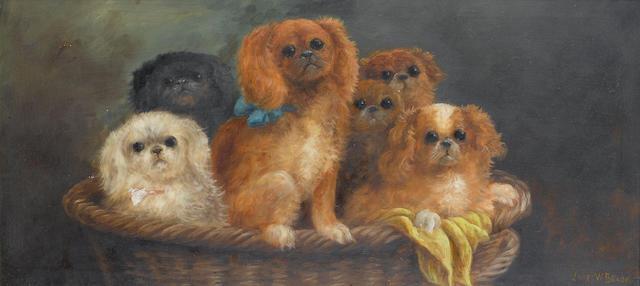 James W. Brook (British, fl.1910-1930) Puppies in a basket 14 x 30 in. (35.5 x 76 cm.)