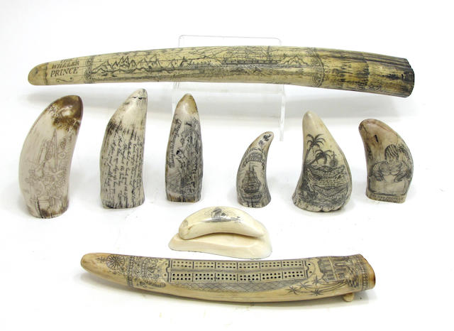 A scrimshaw tooth and eight resin reproductions second half 20th century
